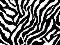 Piel inconsútil del modelo de la piel de la cebra stock de ilustración