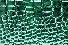 Piel metálica del cocodrilo Fotos de archivo libres de regalías