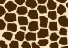 Piel mullida de la textura de una jirafa Fotografía de archivo