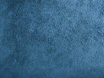 piel Negro-azul Foto de archivo libre de regalías