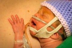 Piel recién nacida de la muchacha del prematuro a pelar con el papá Imagenes de archivo
