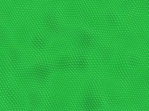 Piel verde del reptil ilustración del vector