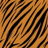 Pieles incons?tiles del tigre de la textura Modelo EPS 10 libre illustration