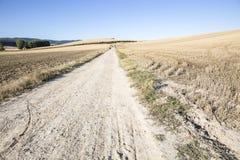 Pielgrzymi chodzi wiejską drogę na letnim dniu i niebieskim niebie Fotografia Stock