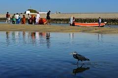 Pielgrzymka W Gujarat fotografia stock