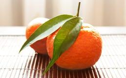 pieluchy słomy tangerines Fotografia Stock