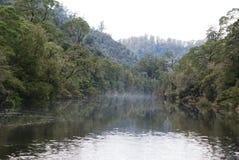 Pieman-Fluss Stockfotografie