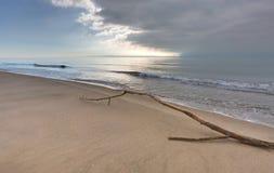 Piemanson wyrzucać na brzeg Camargue, Francja - - de - Zdjęcie Stock