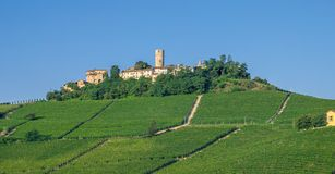 Piemonte dichtbij Asti, Italië Royalty-vrije Stock Fotografie