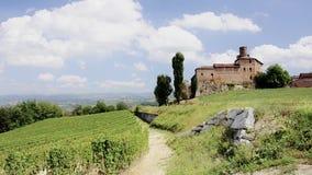 Piemonte, langhe, wijngaarden stock footage