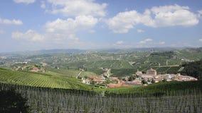 Piemonte, langhe, wijngaarden stock video