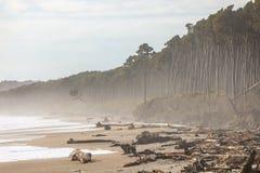 Pieniąca się plaża Zdjęcie Stock