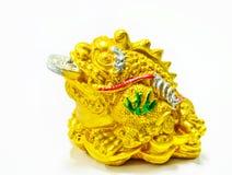 Pieniądze żaba Obraz Royalty Free