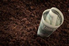 Pieniądze banknot stawiający w ziemi zdjęcie stock