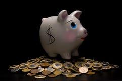 pieniądze banku świnka Obraz Royalty Free