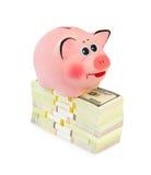 pieniądze banku świnka Obrazy Stock