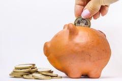 pieniądze banku świnki oszczędności Obraz Royalty Free