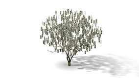 Pieniądze drzewa animacja ilustracji