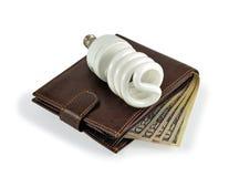 pieniądze energetyczny oszczędzanie Zdjęcia Stock