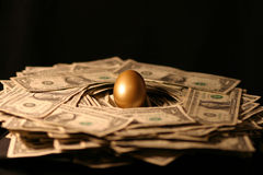 pieniądze jajeczny złoty gniazdeczko obraz stock