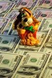 Pieniądze jest prześladowanym wiernego ostrzeżenie psa, stary zwierzę domowe Pies reprezentuje taki wysoka jakość jak lojalność,  zdjęcia stock
