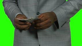 Pieniądze liczenie na zielonym tle zdjęcie wideo