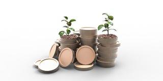 Pieniądze menniczy dorośnięcie i oszczędzania pojęcie na białym tle Fotografia Royalty Free