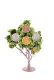 pieniądze narastający drzewo Obrazy Royalty Free