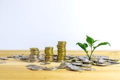 Pieniądze narastający pojęcie Zdjęcie Stock