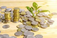 Pieniądze narastający pojęcie Obrazy Stock