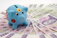 pieniądze oszczędzanie Fotografia Stock