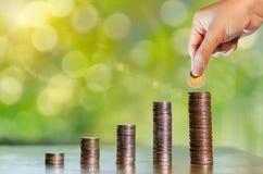 Pieniądze przyrosta oszczędzania pieniądze Górny drzewo monet pokazywać pojęcie zdjęcia royalty free