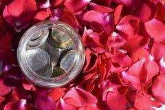 pieniądze róże Fotografia Royalty Free