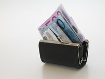 pieniądze, torebkę Fotografia Royalty Free