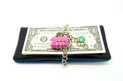 Pieniądze utrzymujący kędziorek Obraz Stock