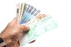 , pieniądze w ręce Zdjęcia Stock