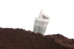 Pieniądze w ziemi na białym tle zdjęcia royalty free