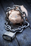 Pieniężna Ochrona Piggybank   Fotografia Stock