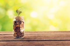 Pieniężnego oszczędzania pojęcie - zasadza rosnąć z monet fotografia stock