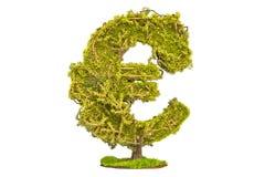 Pieniądze drzewo w formie euro znaka, 3D rendering Zdjęcia Royalty Free