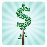 pieniądze etyczny drzewo Fotografia Royalty Free