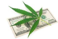 Pieniądze i marihuana Fotografia Royalty Free