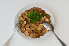 Pieniądze jako surowy jedzenie Fotografia Stock