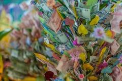 Pieniądze kwiat Obrazy Royalty Free