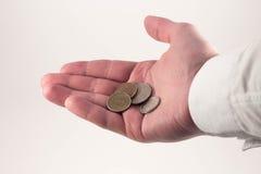 Pieniądze na palmie Zdjęcie Stock