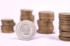 pieniądze pln Fotografia Stock