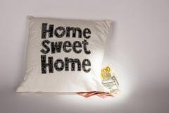 pieniądze poduszka Fotografia Stock