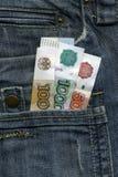 pieniądze twojej kieszeni Zdjęcia Stock
