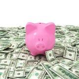 Pieniędzy dolarowi dolary biznesowi Obrazy Royalty Free