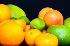 In pieno degli agrumi Arance, mandarini, calce, pomelo, pompelmi Immagini Stock
